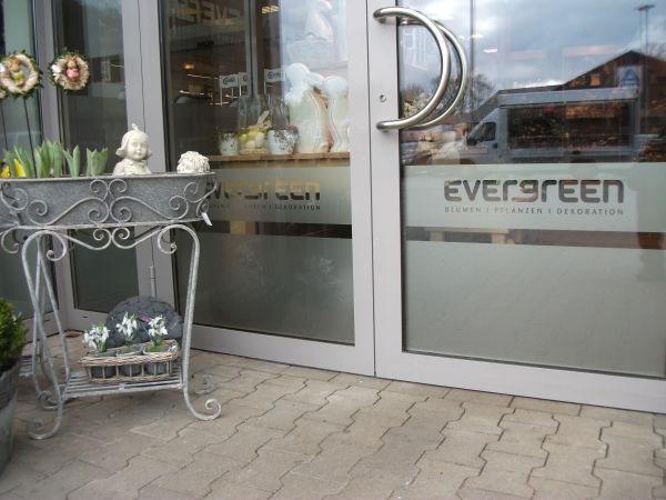 Eingangstür mit Glasdekor und Negativ