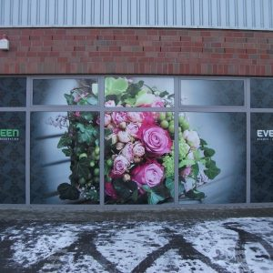 Evergreen Schaufenster