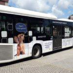 Hörakustik Nessel Stade Bus foliert
