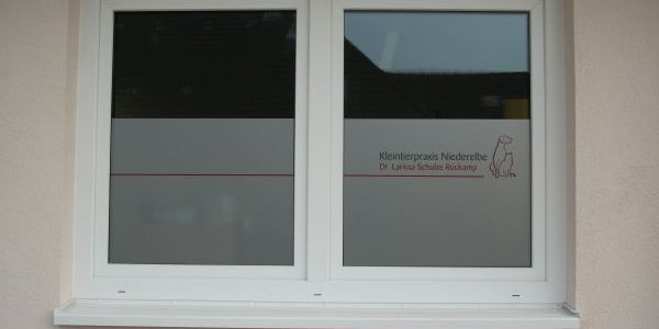 Larissa Schulze Rückamp Tierärztin Glasdekor